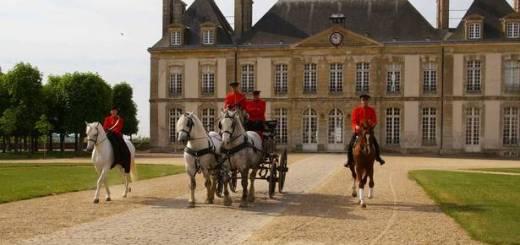 Un attelage en démonstration au Haras national du Pin en Normandie
