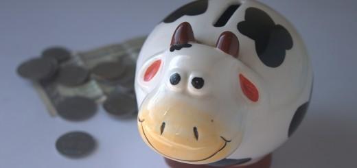 piggy-bank-390528_1920